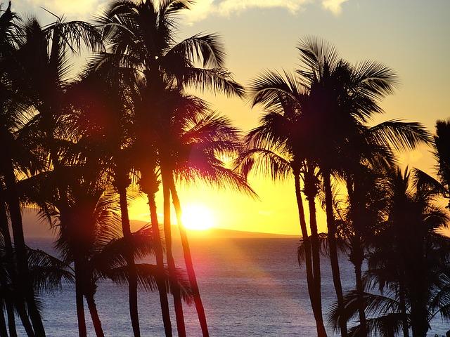 Residential Sprinklers Hawaii